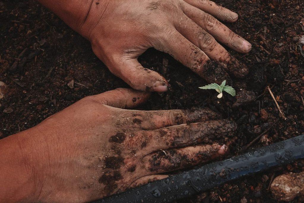 Bauer neben Pflanzen Garten Hoffnung Zukunft Umweltbewusstsein Bewusst durch die Fastenzeit