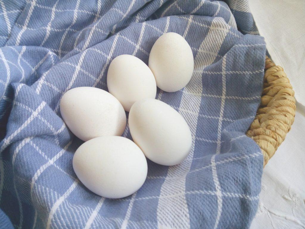 Bauer nebenan, landwirtschaftlicher Direktvertrieb, regional, saisonal, Bioeier, Ei, Eier, Legehennen, Küken, töten, Geschlechtsbestimmung, Hühner